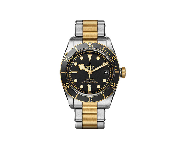 TUDOR - Heritage Black Bay S&G 41 mm